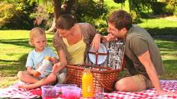 Cute family with picnic basket Footage