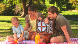 Family having a picnic Stock Video Footage