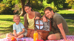 Family having a picnic Footage