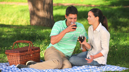 Couple drinking red wine on a picnic Footage