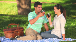 Couple drinking red wine Footage