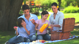 Attractive family having a picnic Footage