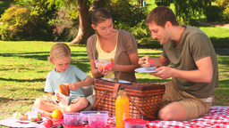 Cute family having a picnic Footage