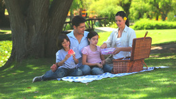 Happy family eating watermelon on a picnic Footage