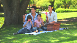 A family having a picnic Stock Video Footage
