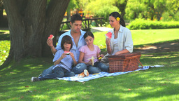 A family having a picnic Footage