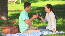 Lovers drinking red wine outdoors Footage
