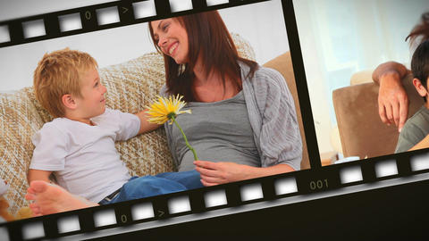 Montage of families at home Stock Video Footage
