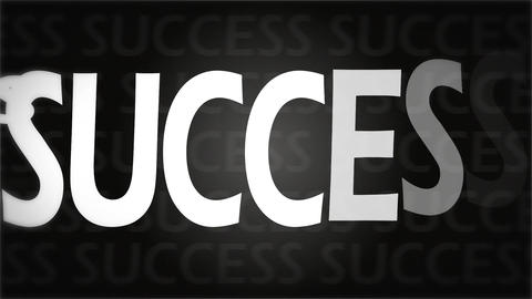Success animation Animation