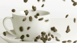 Coffee beans falling in a cup Footage