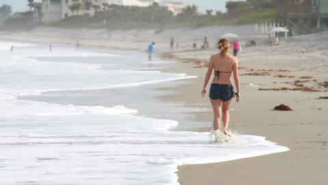 0094 Women Walking on Beach Stock Video Footage