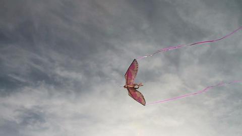 Flying Kit in Sky Stock Video Footage