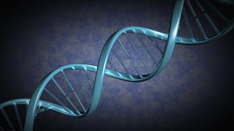 A strand of DNA rotates as the camera moves along it Animation