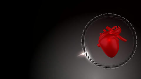 Heart Beating And Rotating As It Moves From The Le stock footage