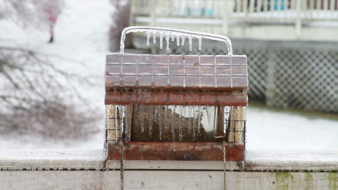 0187 Ice Storm, Icing bird feeder Stock Video Footage