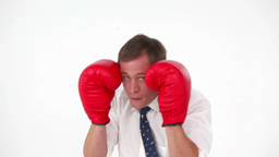 Businessman boxing with gloves Footage