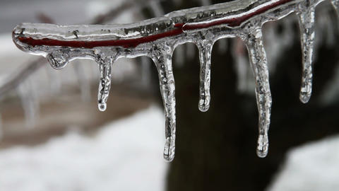 0206 Ice Storm , Icing , Icicle Footage