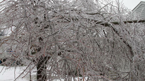 0213 Ice Storm , Icing , Icicle Stock Video Footage