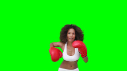 A woman practising her boxing Footage