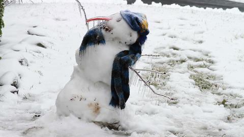 0250 Snow Man, Ice Storm, Icing, Icicle Footage