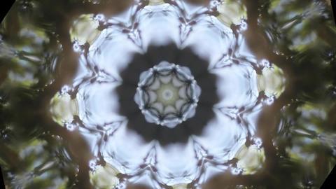kaleidoscope forest 5 Stock Video Footage