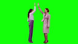 Colleagues in slow motion giving highfive Footage