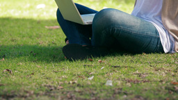 Woman sitting on grass is using a laptop Stock Video Footage