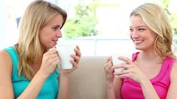 Two blonde women drinking coffee Footage