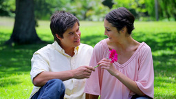 Smiling man giving a pink flower to his girlfriend Stock Video Footage