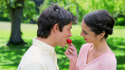Happy woman giving a strawberry to her boyfriend Live Action