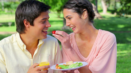Smiling woman feeding her boyfriend during a picni Stock Video Footage