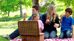 Family picnicking together Footage