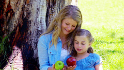 Mother and daughter holding apples Stock Video Footage