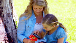 Girl using a magnifying glass on a flower Stock Video Footage