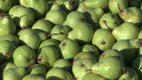 bin of green pears Footage