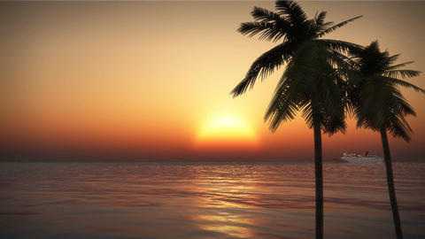 (1201) Tropical Pacific Cruise Ship Palms Ocean Beach Romantic Sunset LOOP Footage