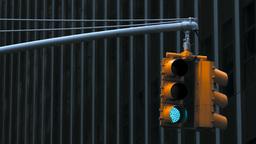 Traffic Light, New York City Stock Video Footage