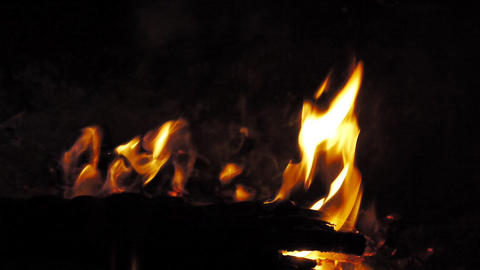 camp-fire-camping-profile_HD Stock Video Footage