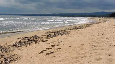 Coastal landscape Footage