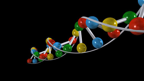 dna 04 Animation
