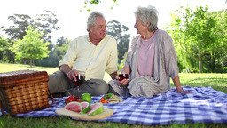 Retired couple having a picnic together Footage
