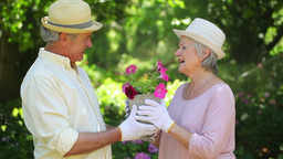 Cute retired couple kissing while gardening Footage