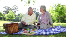 Retired people having a picnic together Footage