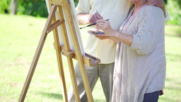 Retired couple painting together Footage