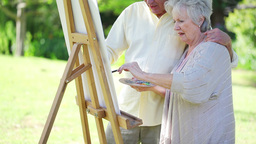 Retired couple painting together Stock Video Footage