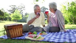 Mature couple drinking wines while at a picnic Stock Video Footage