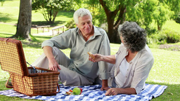 Happy mature people eating a picnic Footage