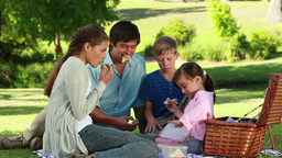 Family eating sandwiches during a picnic Footage