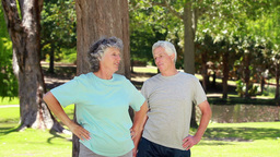 Smiling mature couple doing fitness exercises Footage