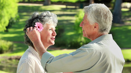 Smiling mature man giving a flower to his wife Footage